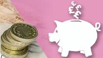 Pay survey pig